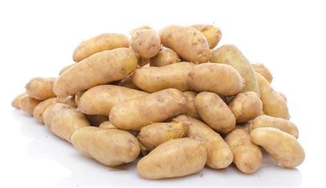 pomme de terre ratte du touquet la belle vie grande