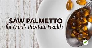 Important Saw Palmetto Benefits For Men U0026 39 S Prostate Health