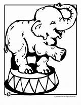 Circus Elephant Coloring Pages Clipart Animals Clip Elephants Cartoon Drawings Kleurplaat Cliparts Printable Animal Colouring Clown Elefant Clipartpanda Kleurplaten Library sketch template