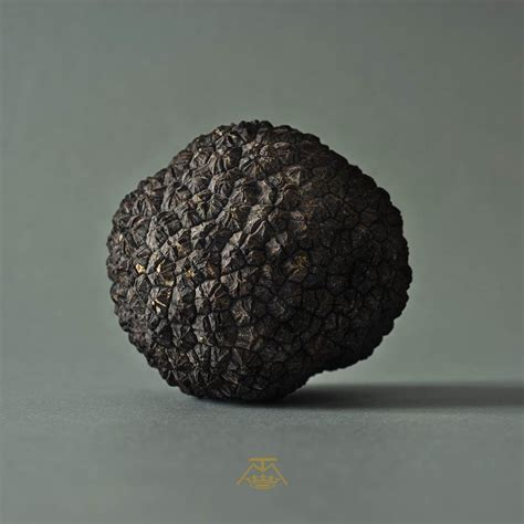 comment cuisiner les truffes noires truffe oh my food