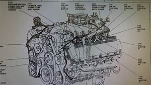 Coolant Temp Sensor Wiring Diagram