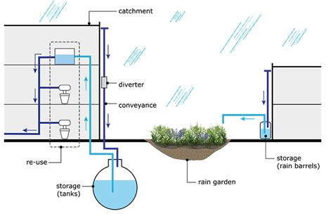 rainwater harvesting  advantages  disadvantages
