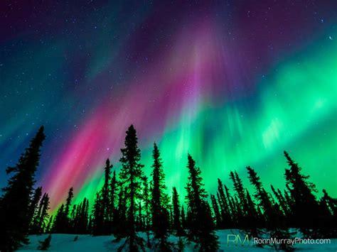 northern lights in alaska borealis alaska s northern lights pictures