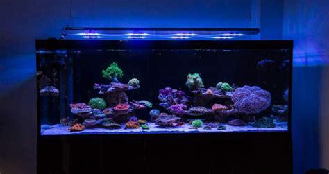 cheap reef tank lighting ati sirius led light is in development reef builders