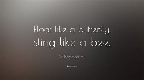 muhammad ali quotes  wallpapers quotefancy