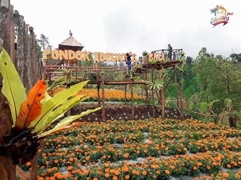 ajaibnya pesona taman wisata edelweis bali