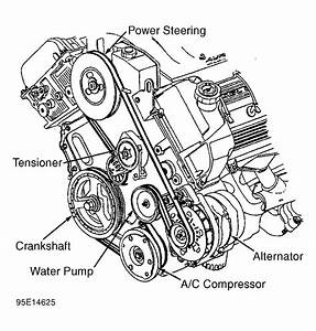 1995 Chevrolet Caprice Serpentine Belt Routing And Timing