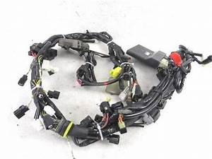 Sell Harley 04 Xl Sportster Clutch Cable  38698