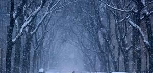 Plus Belles Photos Insolites : insolite les plus belles images de new york sous la neige grazia ~ Maxctalentgroup.com Avis de Voitures