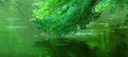Words Garden Kotonoha Niwa Anime Gathered Took