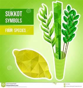 Image Gallery sukkot symbols