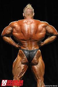 Grundumsatz Berechnen Bodybuilding : welches latissimus training ist am effektivsten bodybuilding kraftsport r ckentraining ~ Themetempest.com Abrechnung