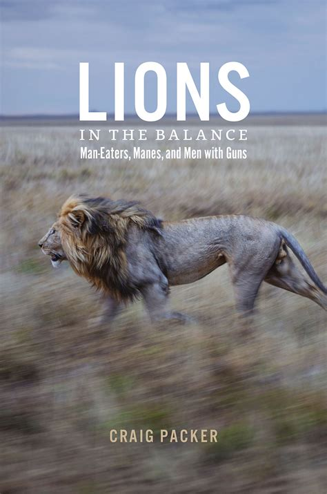 lions   balance man eaters manes  men  guns