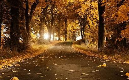 Fall Wallpapers Background Desktop Backgrounds Autumn Stunning
