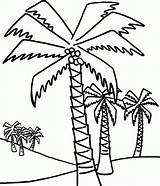 Palm Coloring Tree Trees Pages Coconut Drawing Outline Palms Line Easy Printable Date Sheets Beach Getdrawings Lot Leaf Popular Adults sketch template