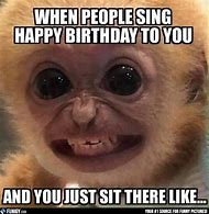 Best Funny Birthday Memes Ideas And Images On Bing Find What You