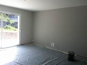 peinture murale grise wikiliafr With amazing couleur gris taupe peinture 2 peinture decorative quelle couleur de salon et de chambre
