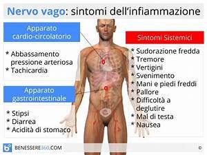 Nervo Vago  Funzioni E Disturbi  Sintomi  Cause  Cure E