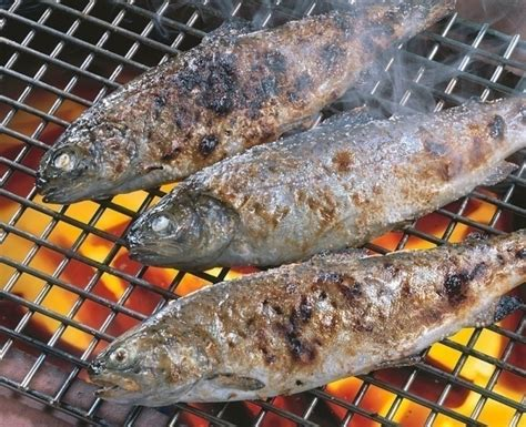 cook trout easy cooking guide