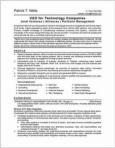 best resume companies resume resume examples 6aznvogzvy With best executive resume writing companies