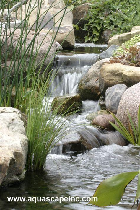 aquascape ponds aquascape your landscape a boring backyard is transformed
