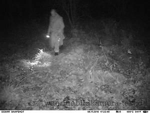 Bewegungsmelder Wo Anbringen : wildkameras tierbeobachtung mit infrarottechnik bilder ~ Lizthompson.info Haus und Dekorationen