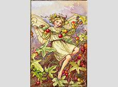 The White Bryony Fairy Flower Fairies