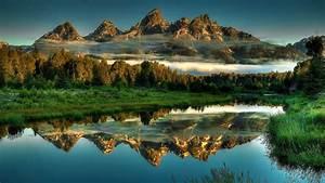 Landscape, Rocky, Mountain, Peaks, Pine, Forest, Mist