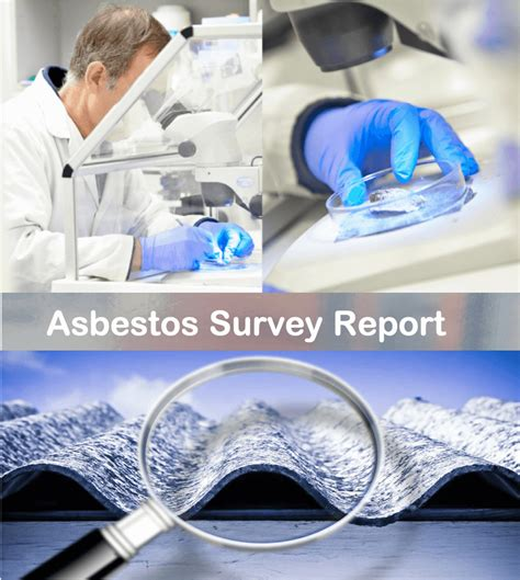 whats included   asbestos survey report bend asbestos