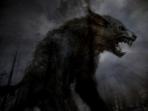 Real Scary Wolf Wallpaper by Wallpaper Hd Wallpapersafari