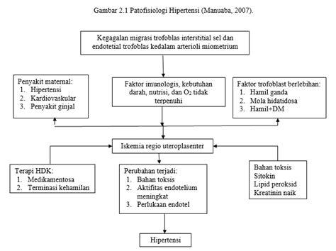 Wanita Hamil Anemia Kumpulan Bagan Patofisiologi Patogenesis Midwifery Blog
