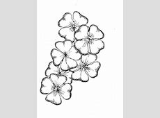 A Bouquet of FourLeaf Clover Coloring Page NetArt
