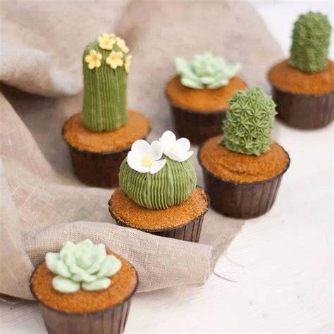 succulent cupcakes food glorious food