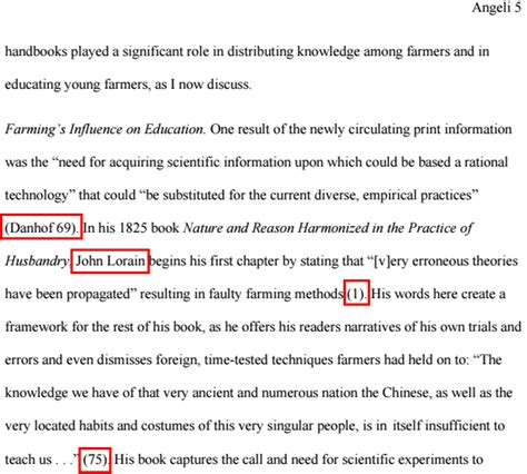 essay  mla citation format  quotes