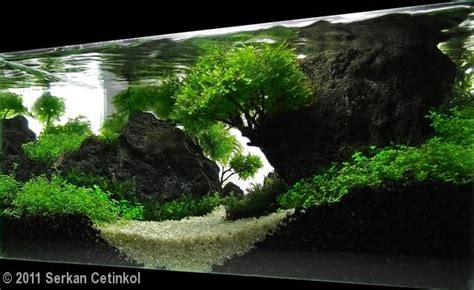 i love the height and use of negative space in this scape