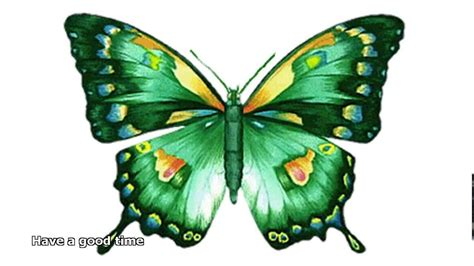Wallpaper Of Animation Picture - animated butterfly pictures