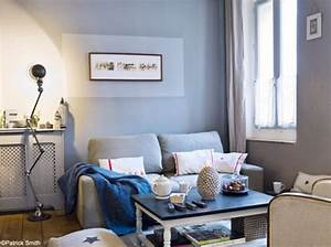 idee deco salon gris et bleu With idee deco salon bleu gris