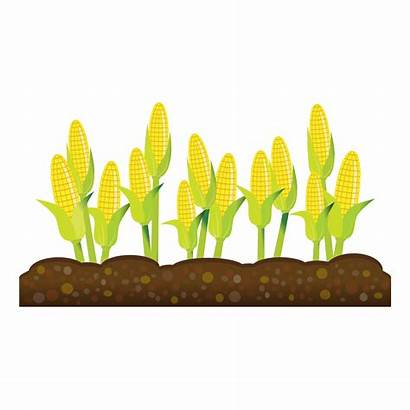 Clipart Crops Crop Agriculture Transparent Background Cliparts