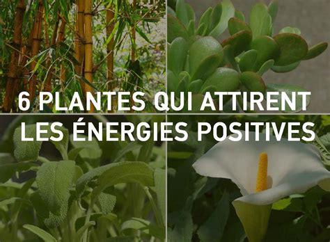 plantes dépolluantes chambre à coucher 6 plantes qui attirent les énergies positives selon le
