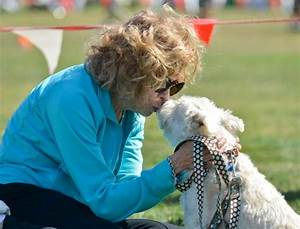 mission viejo animal shelter to celebrate 20 years With mission viejo dog shelter