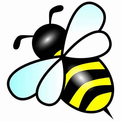 Bee Clip Bees Clipart Clker Bumble Animated