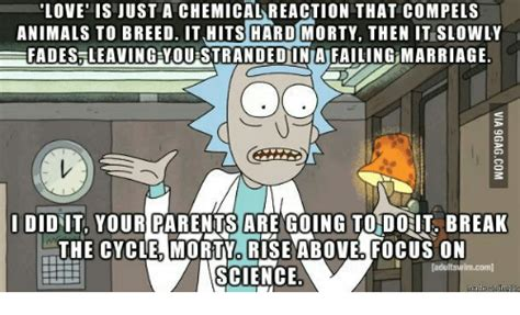 rick  morty quote  people called love rambling