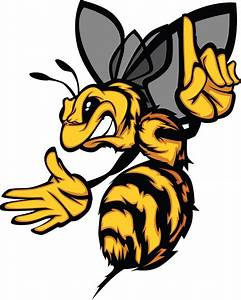 1000+ images about Hornet on Pinterest | Sports logos ...