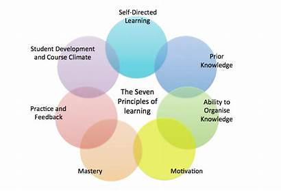 Learning Effective Teaching Principles Prior Knowledge Self