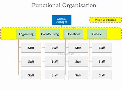 Functional Organizational Structure Organization Pmp Pmi Structures