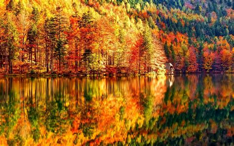 Autumn Fall Backgrounds Hd by Hd Fall Wallpapers 60 Images