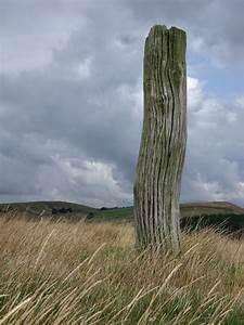 Wooden, Post, U00a9, Stephen, Burton, Geograph, Britain, And, Ireland