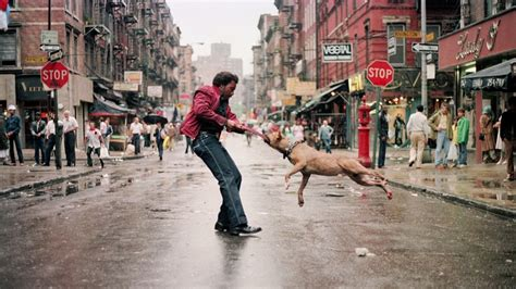 nyc street photographer documentary  awesome