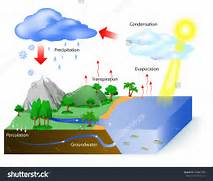 Water cycle diagram  The sun  which drives the water cycle  heats      Evaporation Diagram
