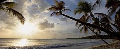 Martinique Paradise Quina Accommodations Sainte Anne